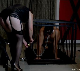 Geiles Hündchen Blacky im Käfig